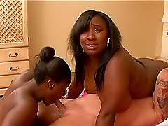 A couple of chubby black girls service a horny white dude